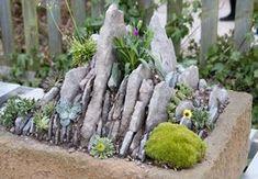 Mini-Steingarten im Trog
