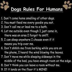 Dogs Rules For Humans...