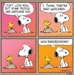 Snoopy & Woodstock :)