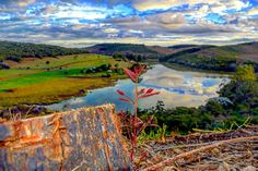 """Novas folhas, novas flores, na infinita benção do recomeço."" Chico Xavier . . . #sunset #travel #sunshine #skyline #cut #photo #landscape_lovers #landscape #horizon #photography #nature #super #cool #colours #bud #lake #landscapephotography #botanical #luxury #water #colorfull #beautiful #trip #portrait #destroy #lagoon #beautiful #kill #desert #watercolor http://tipsrazzi.com/ipost/1507490752534669555/?code=BTrrto3A-jz"