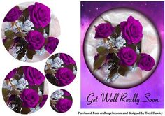 A great card to brighten someones day when they are not feeling to well/ Beautiful Roses and lilac with a purple background. This card also has a matching insert, that is Rose and lilac on satin number Beautiful Red Roses, Pretty Roses, Purple Roses, Lilac, Congratulations Baby Boy, Purple Plates, Get Well Flowers, Rose Price, Rose Got