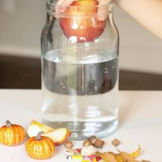 This fall science activity was on the agenda this week! It's a classic sink or float experiment with a fall twist I can't wait for big piles of leaves and crisp autumn mornings. What are you most looking forward to this season?