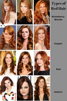 Types of Redheads. You see a lot of colors mislabeled as red hair shades on the internet these days. A warm blonde or a warm light brown is not strawberry blonde. Real strawberry blonde has a light orange cast. Real red hair does not have a cool tone. Burgundy is not red - that's a man-made color. Warm dark brown is not auburn (though you'll see lots of women trying to claim that it is.) To qualify as red, you have to have more red tones in your hair than any other.