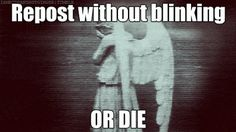 Don't blink. Blink and you die. only whovians get it