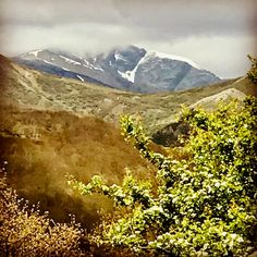 Primavera en la montaña.  #primavera #spring #montaña #mountain #nature #naturaleza