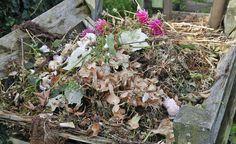 Ein miefender Komposthaufen kann zum Streitobjekt unter Nachbarn werden