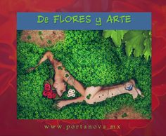 Asparagus, Healthy Living, Sleep, Vegetables, Lifestyle, Flowers, Art, Studs, Healthy Life