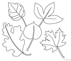 Fall Leaves Line Drawing Coloring Pages Nature, Leaf Coloring Page, Autumn Art, Autumn Leaves, Documents D'art, Art Handouts, Art Worksheets, Fall Crafts For Kids, Line Drawing