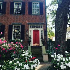 """26.6k Likes, 160 Comments - Southern Living (@southernlivingmag) on Instagram: """"Savannah in bloom. ❤ #SLTravels : @hayeshannah"""""""
