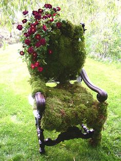 DIY moss covered chair for your garden! Follow Fernwood for other ideas like this one!