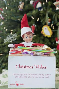 Elf on the Shelf - Leave a piece of candy for my tummy and tell me your wish..