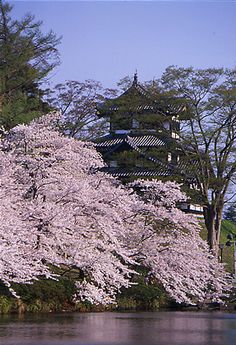 Takada castle, Japan Real Castles, All About Japan, Japanese Colors, Japanese Castle, Japan Garden, Turning Japanese, Asian Love, Castle In The Sky, Island Nations