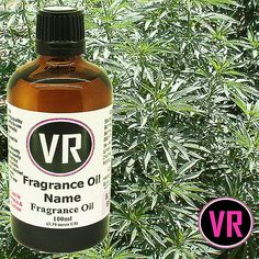 100ml Cannabis Fragrance Oil for Home by VandaRoseAroma on Etsy
