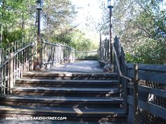 Disneyland Secret #3   The Secret Path...This is awesome and I had no idea, we haf clam chowder at harbor galley last time and never walked this path. ..will be on my DL list for next trip!!