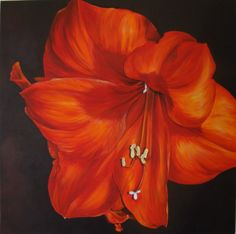 Flower Paintings by Sarah Caswell   Glory