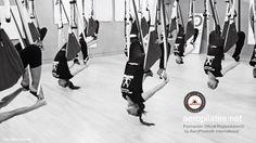 Ya en México!, Foto original de #RafaelMartinez, creador métodos AeroPilates® y AeroYoga®, #Formación Oficial , #Cursos, Diploma homologado internacionalemente en #YogaAereo y #PilatesAereo ( #AerialYoga #AerialPilates ) #aeroyoga #aeropilates #fly #flying #acro #acrobatico #columpio #swing #pilatescreativo