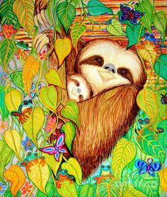 Endangered three toed sloths and frogs in a vanishing rainforest.