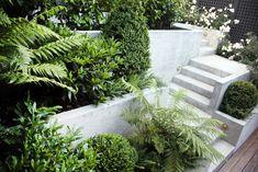 JWA_Coxhead Garden_04.jpg