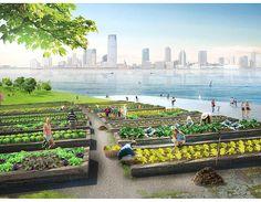 Arch Mundo - Arquitetura para um mundo melhor. | Conheça o projeto Green Loop, uma ilha de compostagem em Nova York.