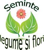Seminte de legume si flori