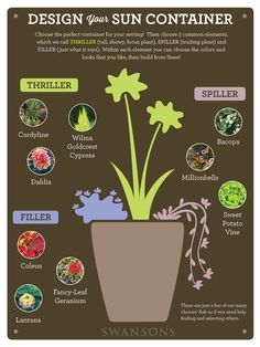 Container Design for Sun: Simple Style Solutions Choosing the plants for a container garden arrangement can sometimes seem daunting. How do you decide which plants will create the multidimensional masterpiece you envision? It can be helpful to use a co Container Design, Outdoor Flowers, Outdoor Plants, Potted Plants Patio, Garden Plants, Shade Garden, Plants For Porch, Outdoor Pots And Planters, Potato Vine Planters