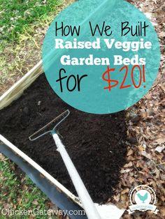 Cheap Raised Vegetable Garden Beds - ChickenGateway.com