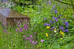 Fem smukke bede fra Chelsea Flower Show Chelsea Flower Show, Flowers, Plants, Garden, Inspiration, Garten, Biblical Inspiration, Planters, Royal Icing Flowers