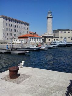 Trieste - Italy La Lanterna