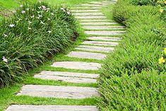 Check out these 75 beautiful and inspiring garden path ideas. Small and large paths and walkways in garden settings. Painted Garden Sheds, Wood Pathway, Shed Landscaping, Landscaping Design, Path Ideas, Garden In The Woods, Garden Club, Easy Garden, Picture Design