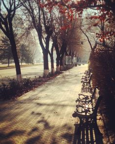 Sunny winter mornings in Yerevan.