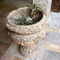 Stone Planters, Planter Pots, Organic Beauty, France, Antiques, Instagram Posts, Plants, Antiquities, Antique