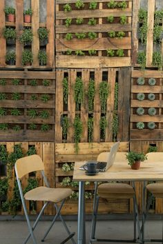 Garden fence made of shipping pallets with plants, vegetables and herbs