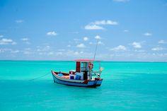 As belas praias alagoenses são ideais para quem gosta do verão brasileiro, mas dispensa o carnaval. A dica é Maragogi.