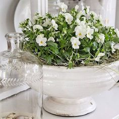 Flair Style Co. provides home staging services in Grey County and Southern Georgian Bay. Home staging and seasonal decor services in Collingwood, Thornbury, Meaford and Owen Sound. Home Staging, Seasonal Decor, Glass Vase, Articles, Spring, Home Decor, Style, Homemade Home Decor, Stylus