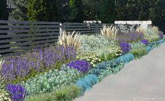 """Gotowy projekt ogrodu - """"Rabata błękitno-biała"""" (BEZ SADZONEK)."""