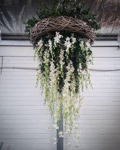 Floral chandelier installation @bloomcollege xx #floralinstallation #chandelier #flowers #orchids #gum #whiteflowers #florist #lilacsforlucy #bellarinepeninsula #bellarine #oceangrove #geelong by lilacsforlucy http://ift.tt/1JO3Y6G