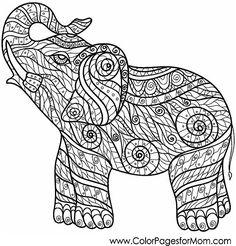 Elephant Zendoodle Coloring Page