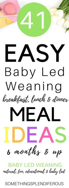 41 Easy Baby Led Weaning Breakfast, Lunch & Dinner Ideas 6 months and up+
