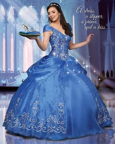 Disney Royal Ball Quinceanera Dresses Cinderella Style 41064 - $798