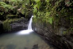 Juan Diego waterfall, El Yunque National Forest, Puerto Rico