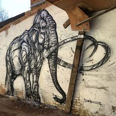Stunning Animal Street Art Made with Geometric Lines by Dzia - My Modern Met