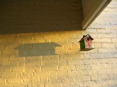 lonely birdhouse