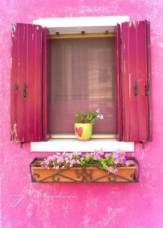 #window with pretty pink shutters