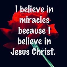 I believe in miracles becsuse I believe in Jesus Christ. Lord And Savior, God Jesus, Jesus Help, The Words, Religious Quotes, Spiritual Quotes, Jean 3 16, Religion Catolica, Believe In Miracles