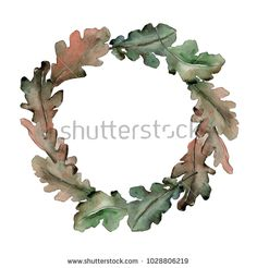 Stock Photo Oak Leaves Wreath In A Watercolor Style Aquarelle Leaf For Background Texture Wrapper Pattern Frame Or Border