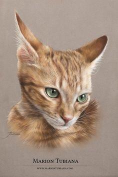 Tubiana Marion - Artiste Equine et Animalière - Pastels, peintures.