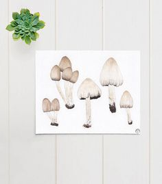 Mushrooms watercolor  This is an archival print of my original watercolor painting. A giclee print.  The subject is a botanical specimen collection of Coprinus atramentarius mushrooms.  SIZE: 8X10 inches (20cmX 25cm)  MATERIALS: Pigment inks on 100% cotton, bright white, 210gsm fine art paper which is eco friendly and archival.  SIGNATURE: Teodora Opris printer's chop mark, bottom right.  CARE INSTRUCTIONS: In order to keep your print in great condition it is important to frame with…