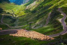 Transfagarasan by Cezar Machidon on Romania, Mountains, Nature, Travel, Childhood, Naturaleza, Viajes, Infancy, Destinations