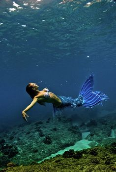 they say that 90 percent of the ocean is still undiscovered...so don't tell me that there arent any mermaids!! :D