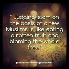 Islam is awesome. It just needs to be known and seen as how it is by itself not as how others reflect it.